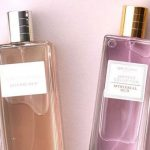 Oud Collection Fragrances